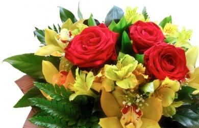 Giv en flot buket påskeblomster til din kæreste