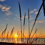Smuk solnedgang ved vandet