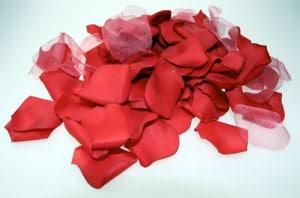 Rosenblade er flotte at pynte op med