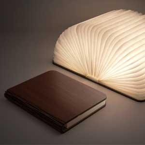 Bog kamufleret som lampe