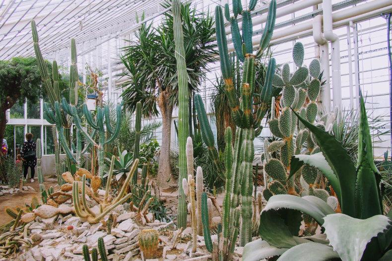 Botanisk Have i Århus