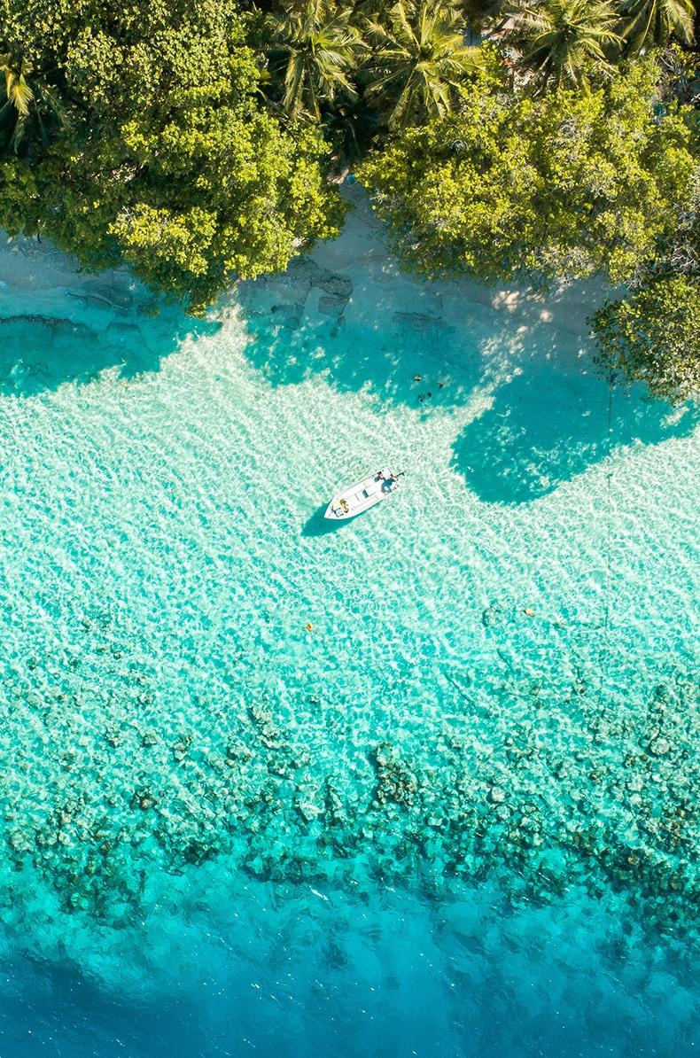 Bryllupsrejse til Maldiverne