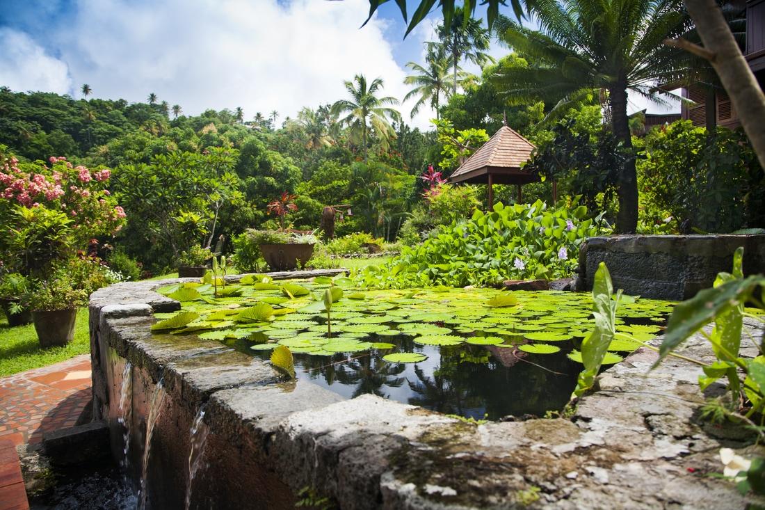 Ladera resort i Caribien